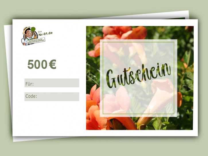 500 € Geschenkgutschein für Gartenpflanzen
